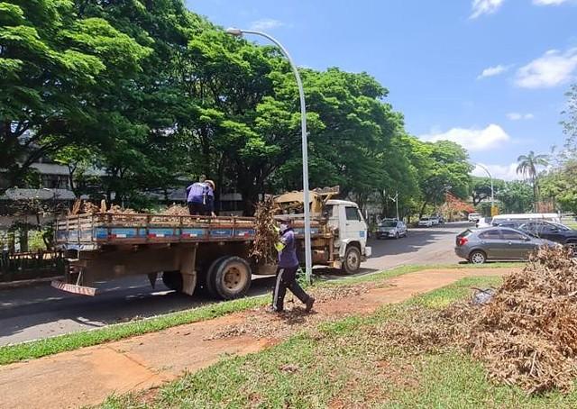 'GDF Presente' retira 16 toneladas de lixo da 402 Norte
